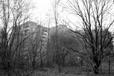 Pripyat, Chernobyl Exclusion Zone (#6849)